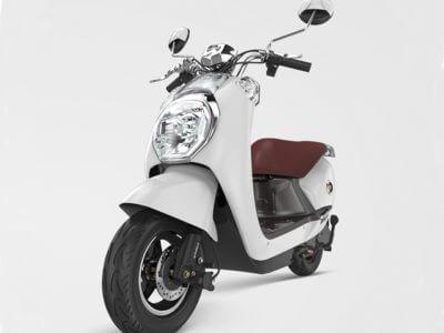 Elektro-Moped Diamond (2)
