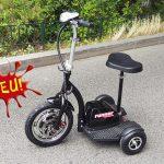 Elektro Scooter Dreirad RUNNER