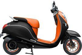 Elektro-Moped Strong