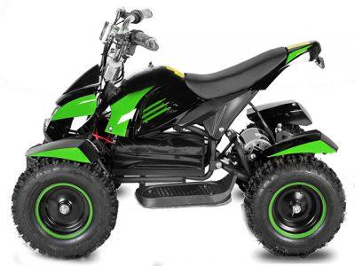 Eco Cobra Elektro-Quad